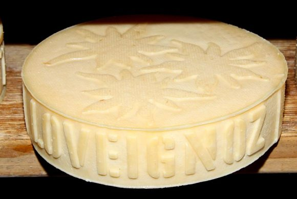 Petit fromage « edelweiss »